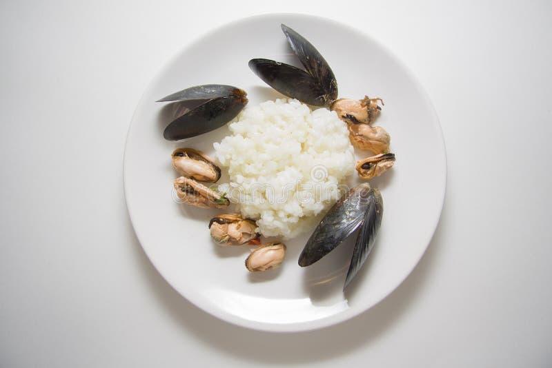 Рис с marinated съемкой студии мидий стоковое фото rf