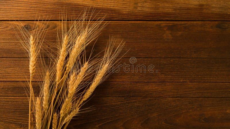 рис ячменя как абстрактная деревянная предпосылка текстуры стоковые изображения rf
