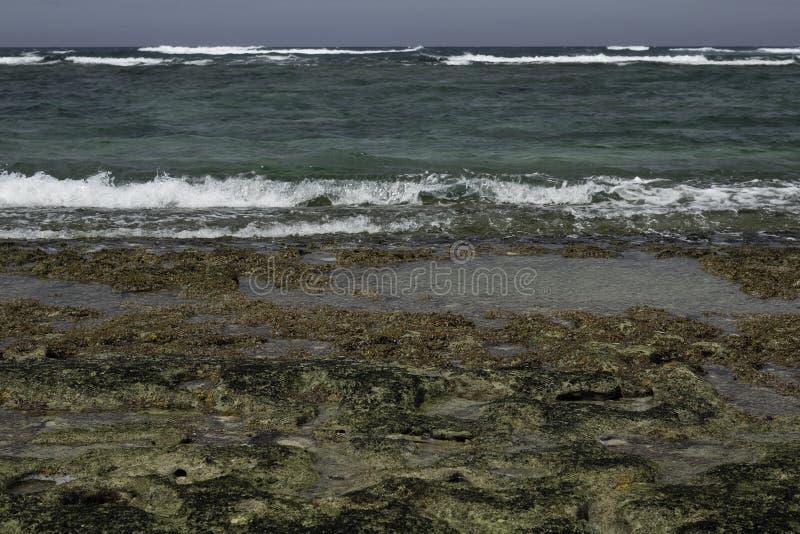 Риф в мелководье с волнами стоковое изображение
