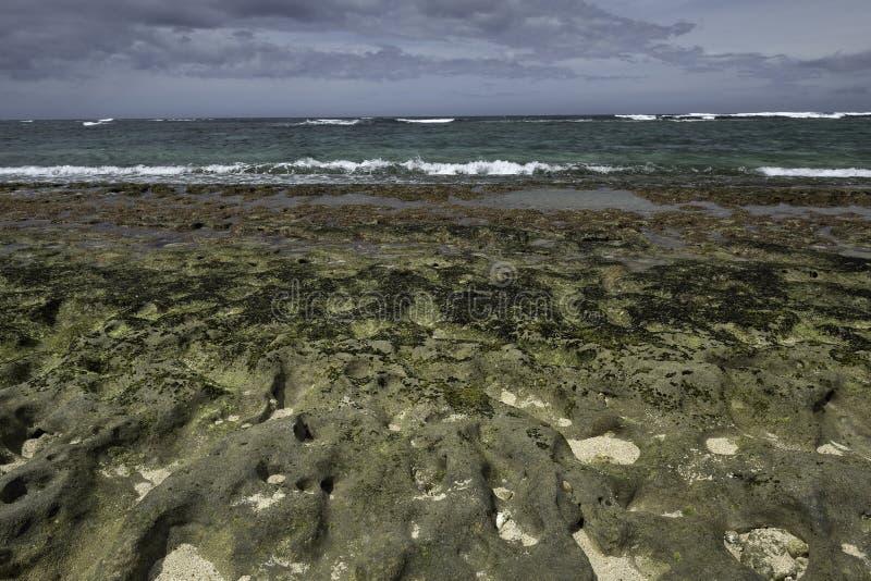 Риф в мелководье с волнами стоковые фото