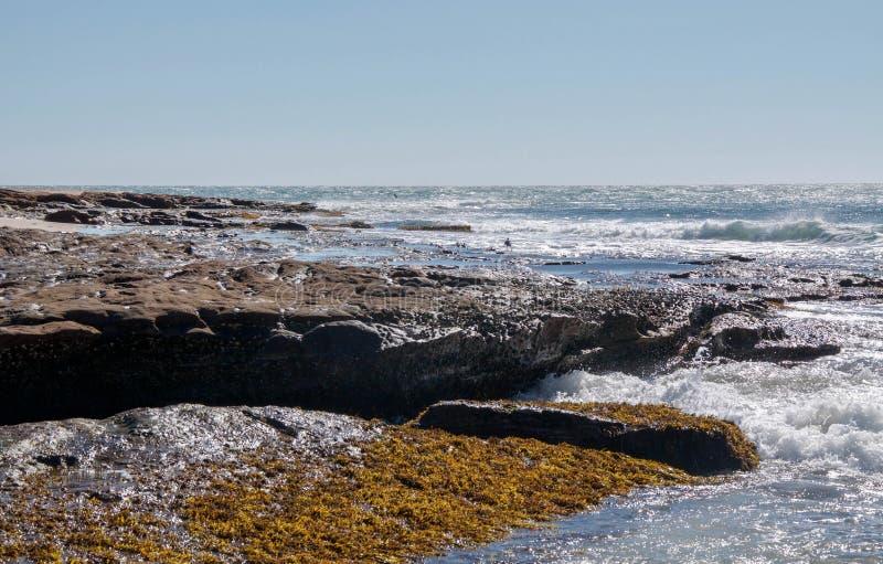 Риф утеса и пляжа стоковые изображения