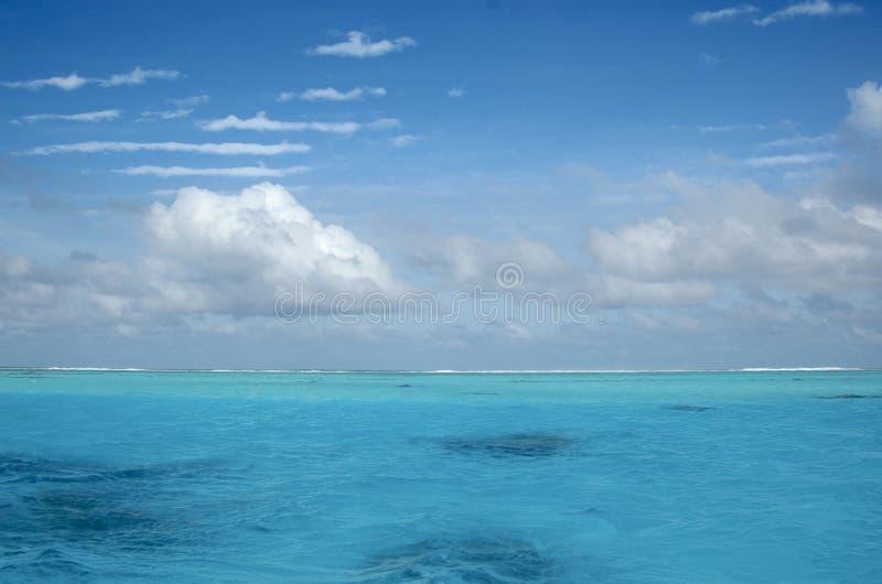 риф стоковые фотографии rf
