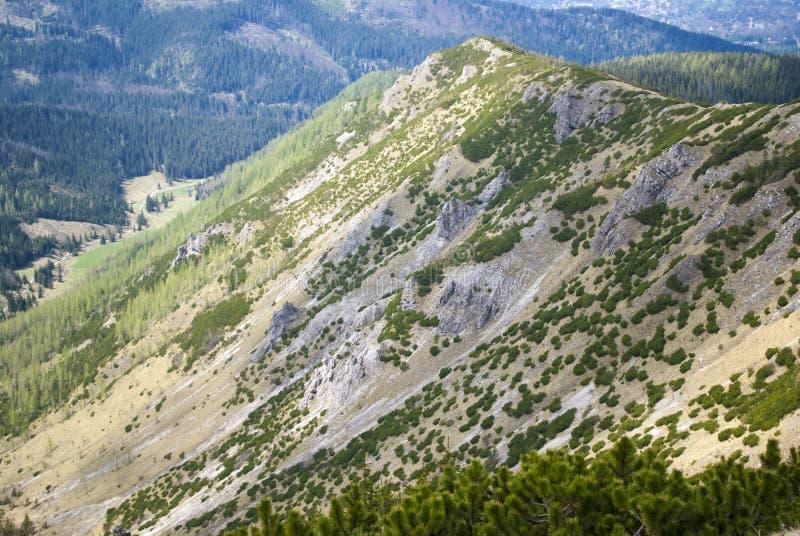 Ридж горы стоковое изображение