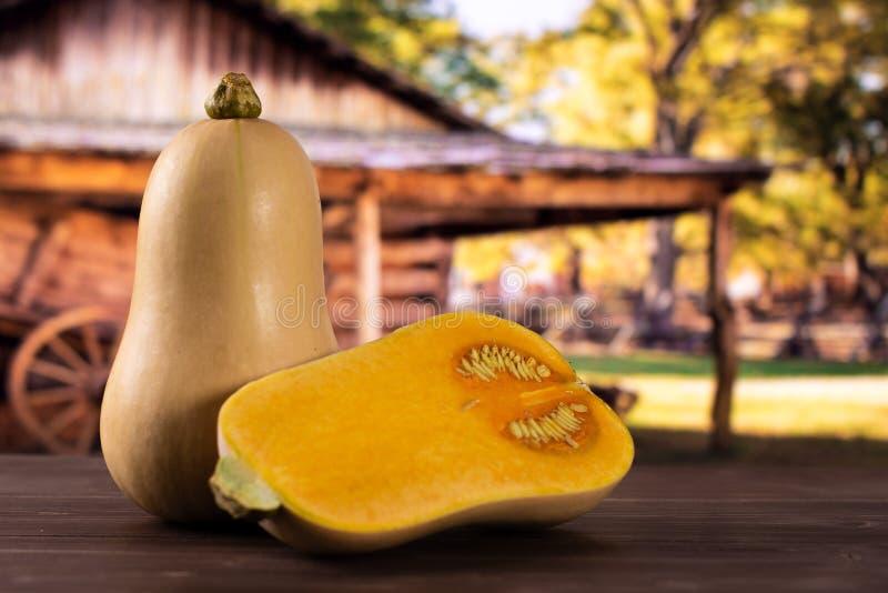 Ровная груша сформировала оранжевое waltham сквоша butternut с тележкой стоковое фото rf