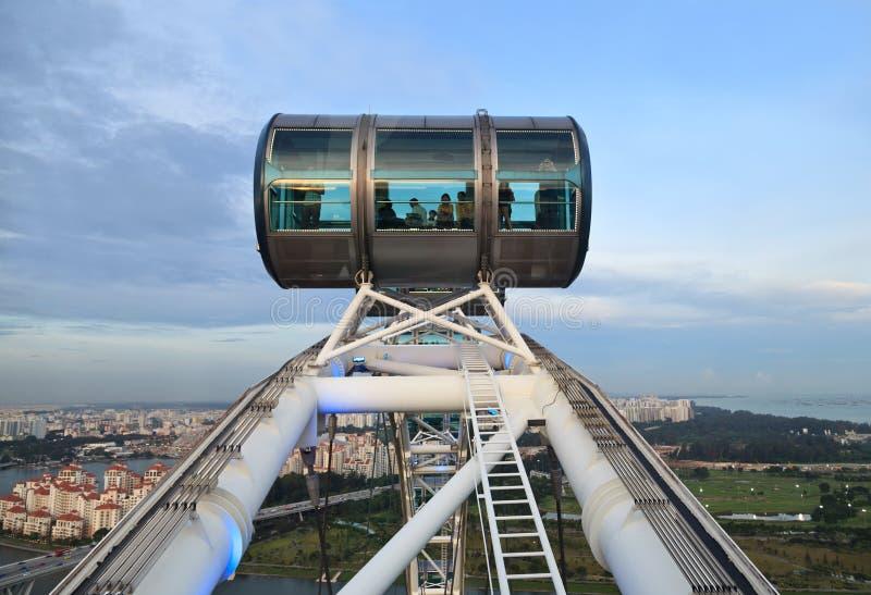 Рогулька Сингапура стоковое фото