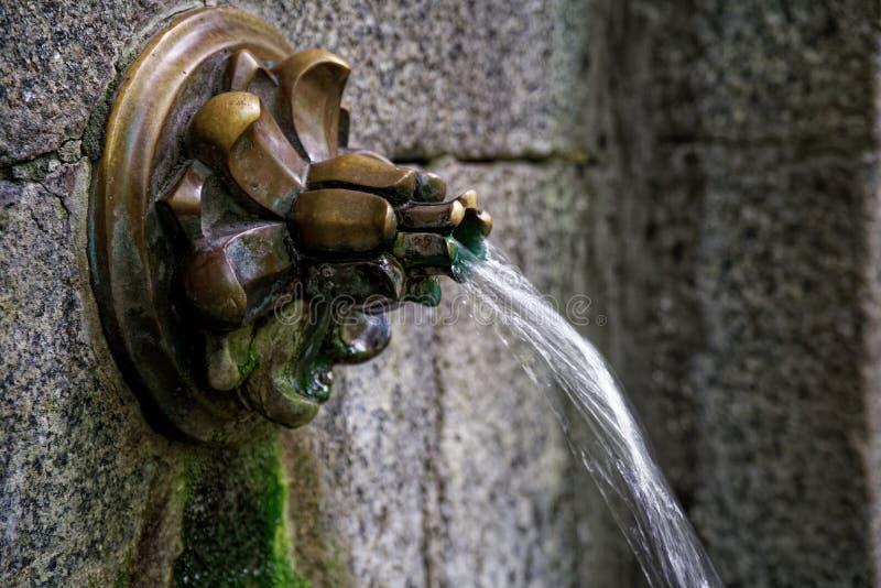Родник с кристаллической, чистой и яркой водой Низкий угол стоковые изображения rf