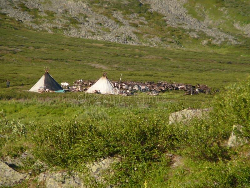 Родной лагерь стоковое изображение