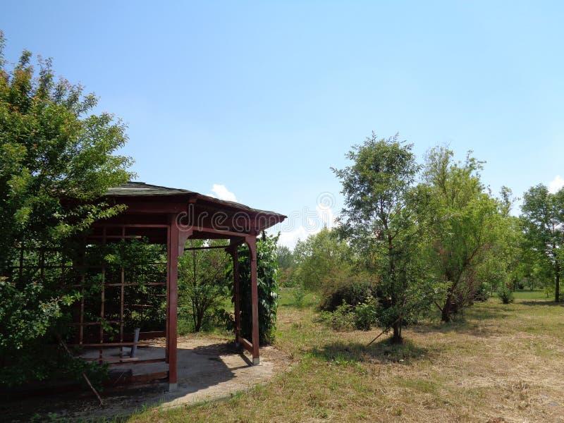 Родовая вегетация - сад Eutopia - Arad, Румыния стоковые фото