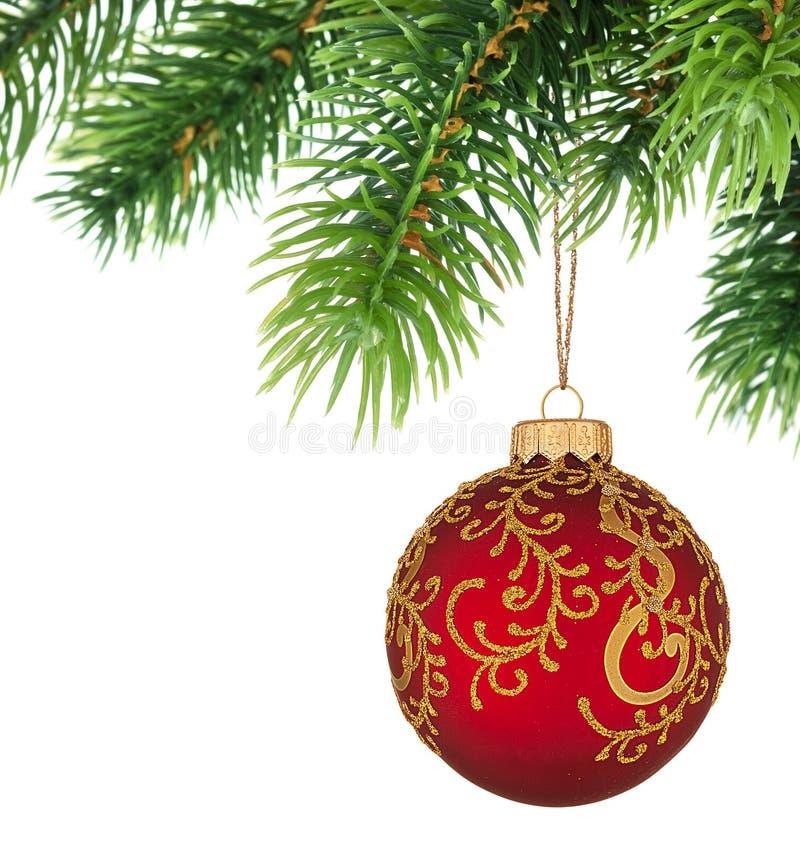 рождественская елка ветви шарика стоковое фото
