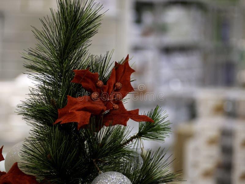 Рождественская елка в интерьере стоковое фото rf
