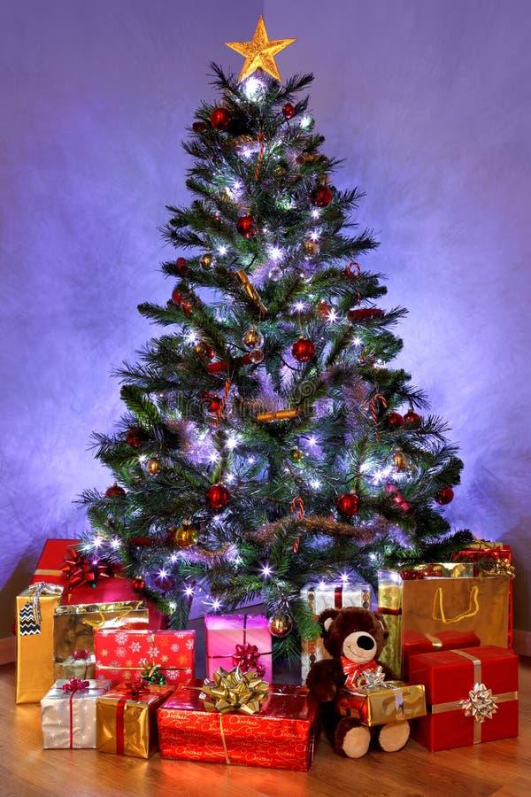 Рождественская елка и настоящие моменты стоковое изображение rf