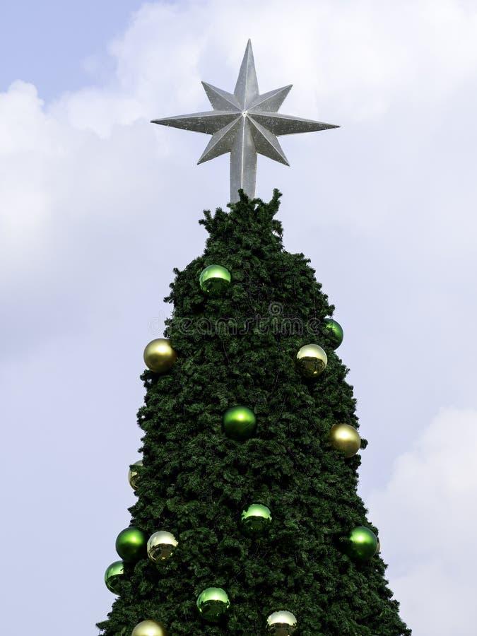 Рождественская елка на голубом небе стоковое изображение rf