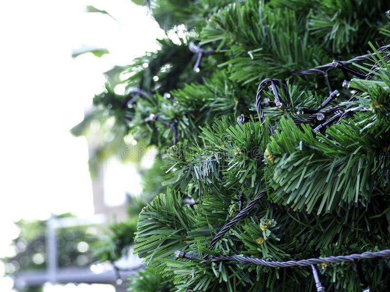 Рождественская елка на голубом небе стоковые фото
