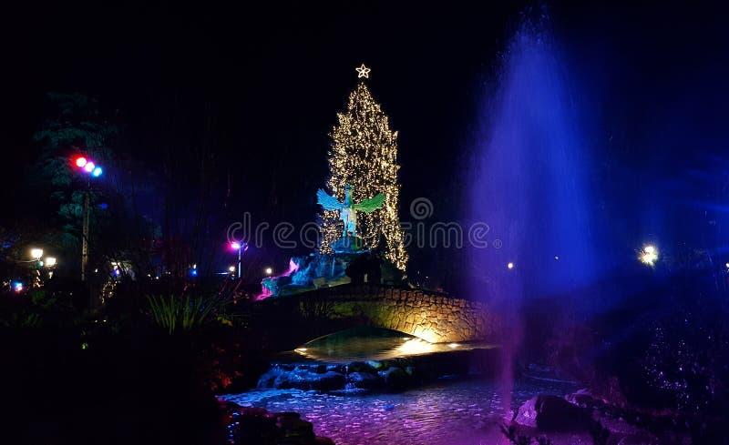 Рождественская елка на парке города в Katerini стоковые изображения