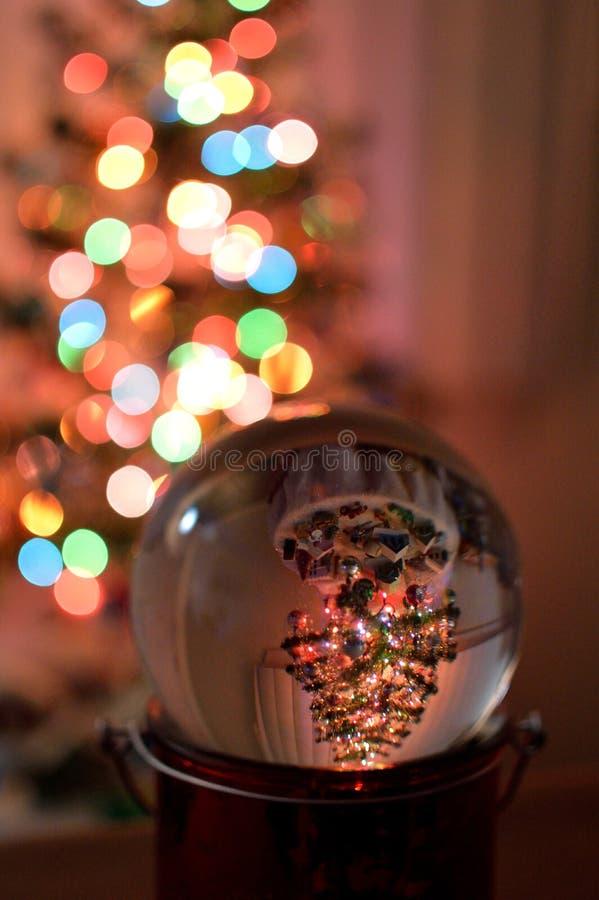 Рождественская елка отраженная в стеклянном глобусе стоковая фотография