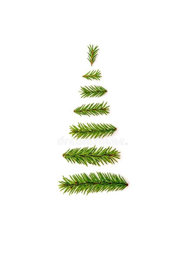 Рождественская елка символа от ели разветвляет на белой предпосылке C стоковые фото
