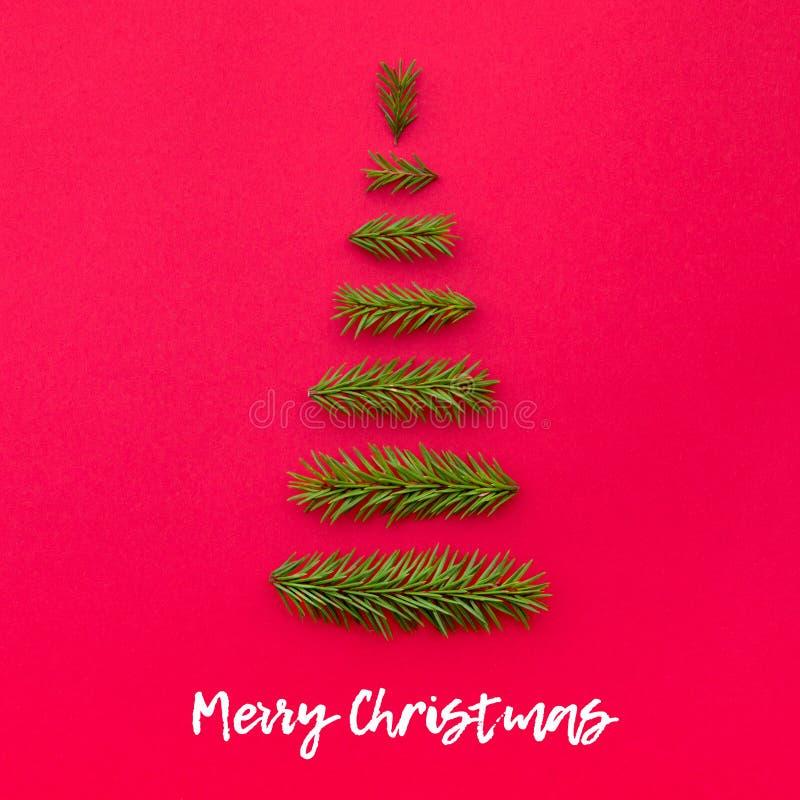 Рождественская елка символа от ели разветвляет на красной предпосылке стоковые изображения rf