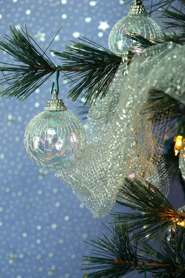рождественская елка стоковое фото