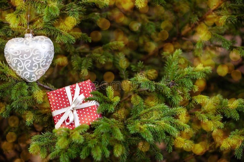 Рождественская игрушка и подарочная коробка среди ветвей деревьев размыты светильники на заднем плане стоковое фото rf