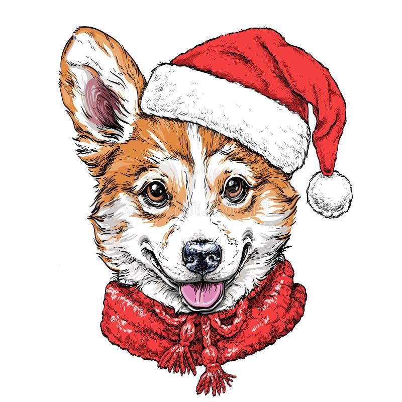 Рождественская открытка с портретом corgi Welsh Пембрука щенка в красных шляпе и шарфе ` s Санты также вектор иллюстрации притяжк бесплатная иллюстрация