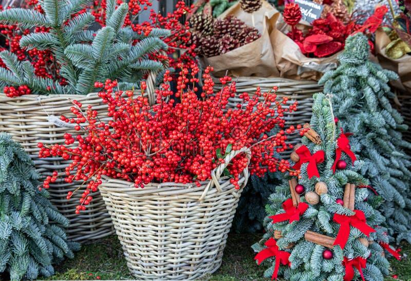 Рождественские голли или илексные ветки и голубые ели ветви в корзинах для викеров, мини-христмас деревья, созданные из ели ветве стоковые фото