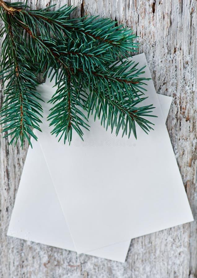 Рождественские открытки с ветвью ели стоковое фото