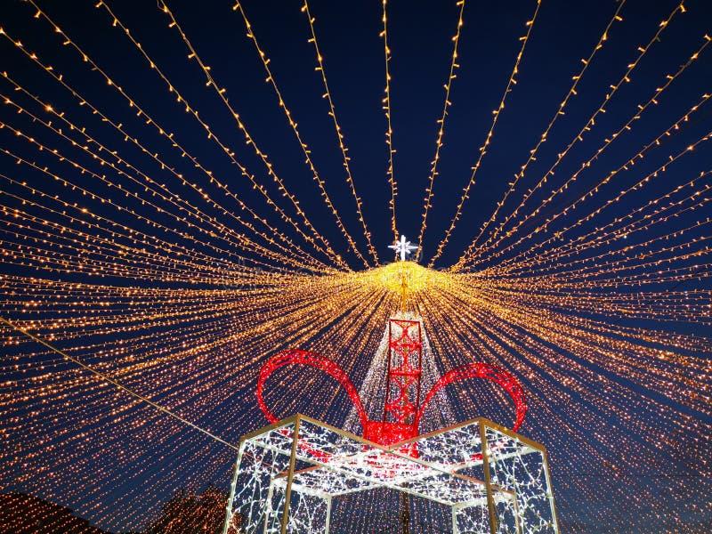 Рождественские украшения в парке ночью стоковые фотографии rf
