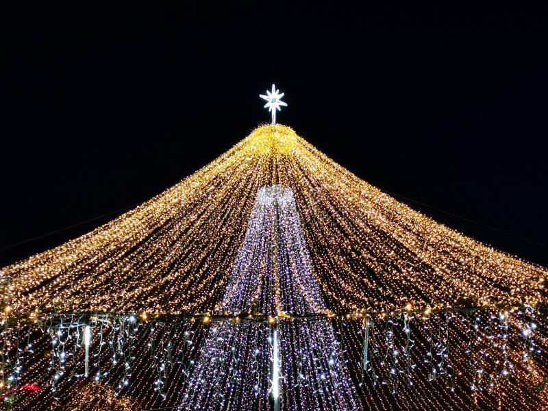 Рождественские украшения в парке ночью стоковое фото