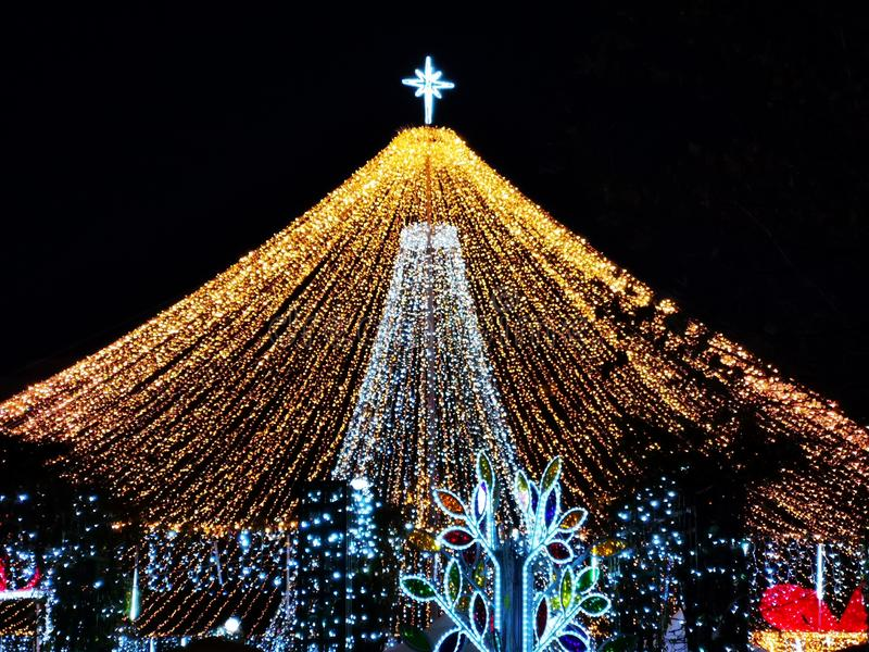Рождественские украшения в парке ночью стоковые изображения rf