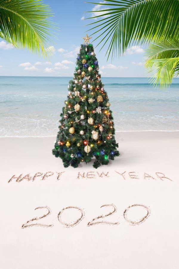 Рождественский и новогодний тропический пляж стоковое изображение rf