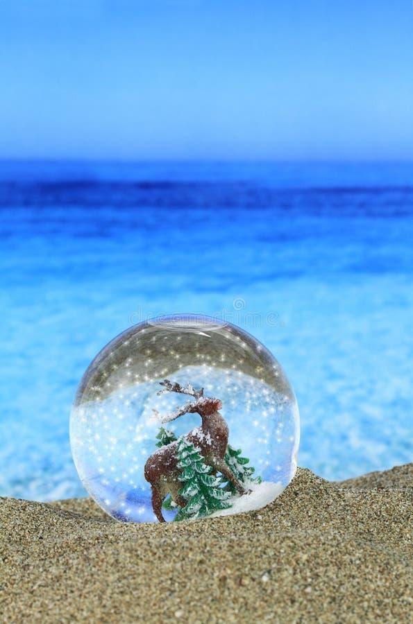 Рождество на пляже стоковое изображение rf
