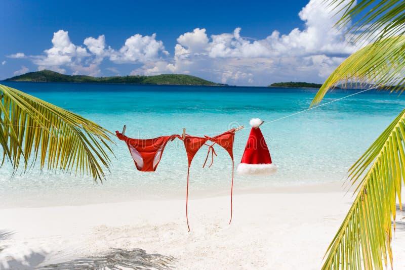 рождество пляжа тропическое стоковая фотография