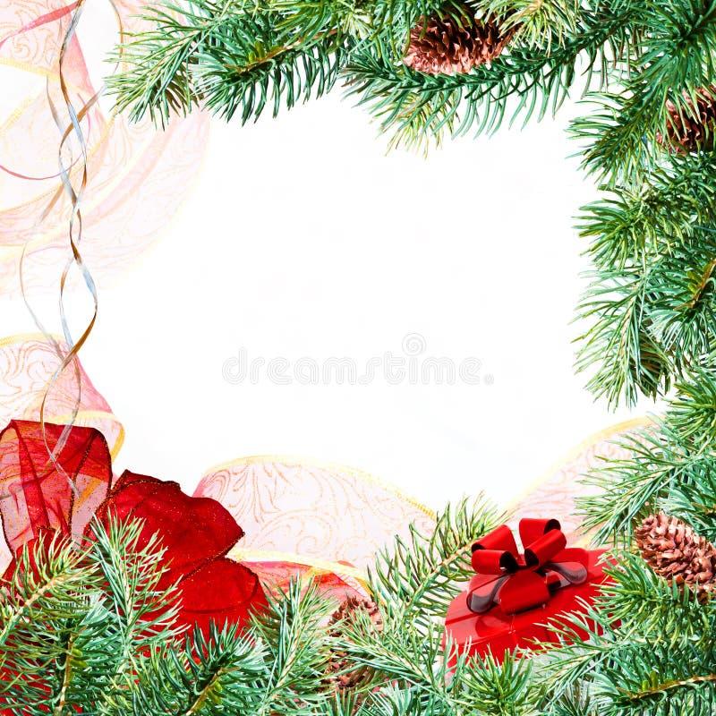 Рождество разветвляет рамка стоковое фото rf