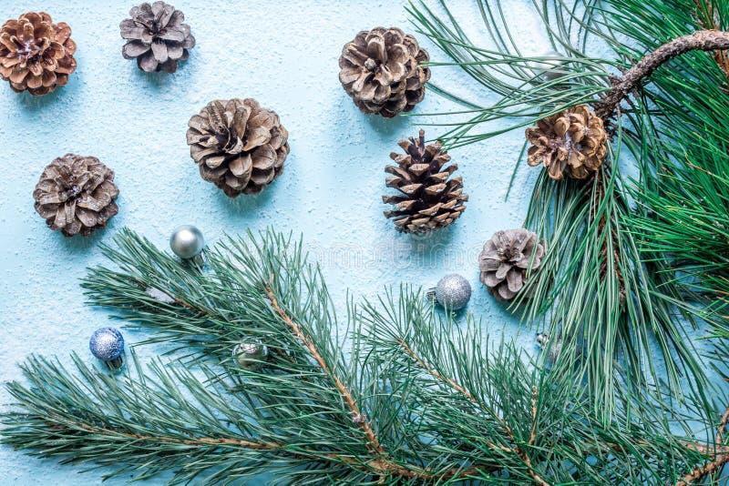 рождество украшает идеи украшения свежие домашние к Рождественская елка ветви и спрус конусов на снеге Взгляд сверху, плоское пол стоковое фото