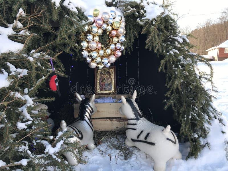 Рождество чудесный день стоковое фото