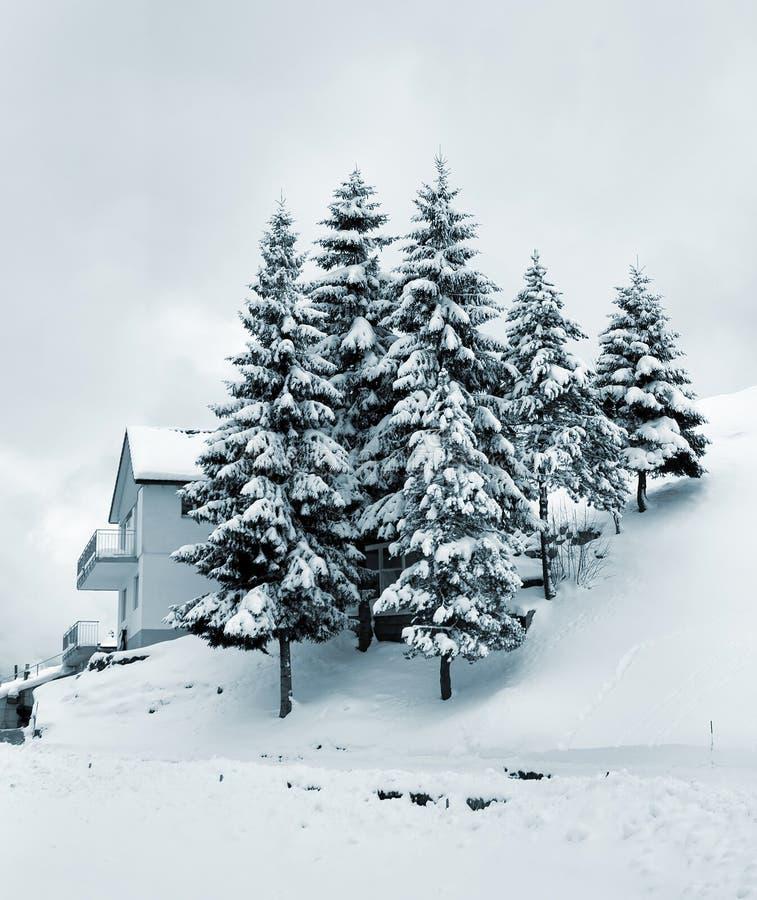 Download рождество стоковое изображение. изображение насчитывающей сезон - 6853007