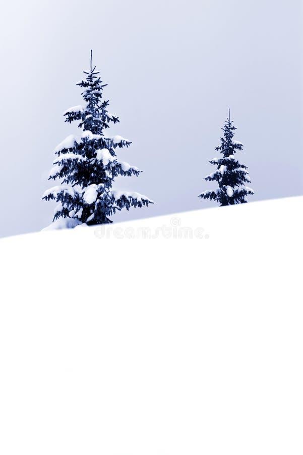 Download рождество стоковое изображение. изображение насчитывающей сезонно - 6865969