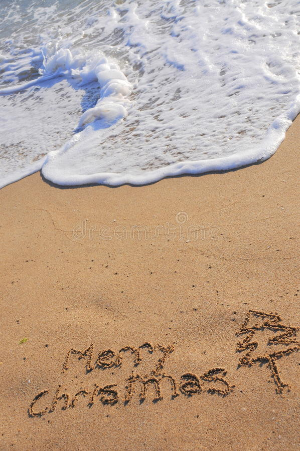 рождество exoric стоковая фотография