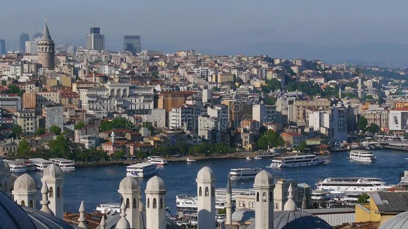 рожочок залива золотистый Стамбул акции видеоматериалы