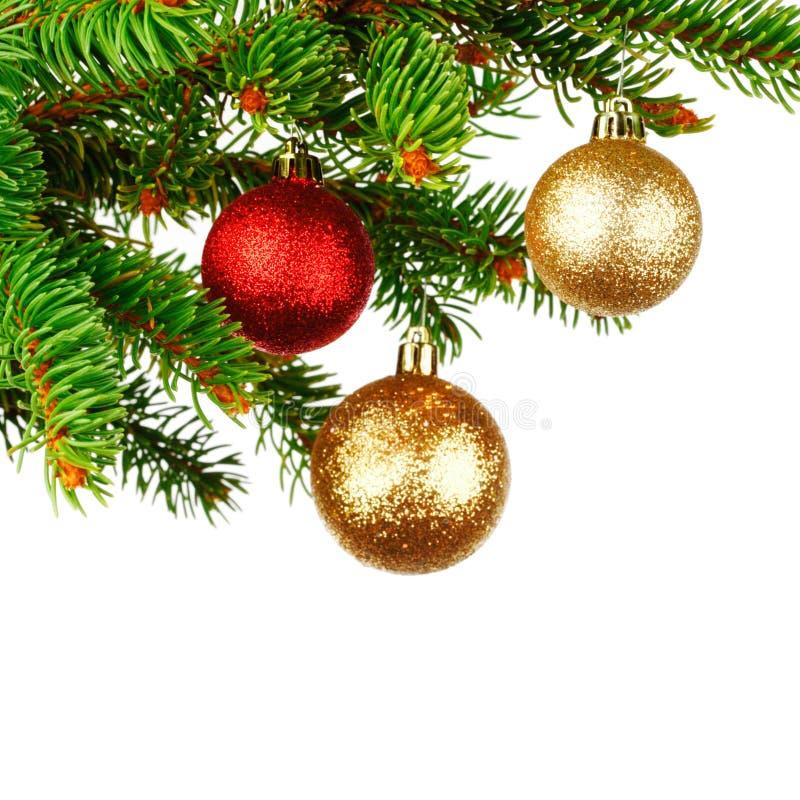 рождественская елка ветви шарика стоковое изображение