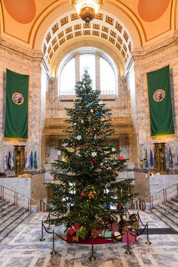 Рождественская елка в капитолии Олимпии стоковое фото rf