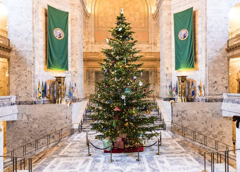 Рождественская елка в капитолии Олимпии стоковые изображения