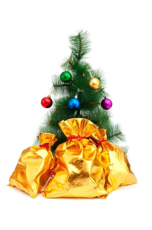 Рождественская елка и золотые мешки стоковое изображение