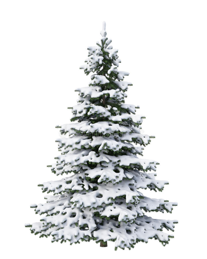 Рождественская елка снега изолированная на белой предпосылке стоковая фотография