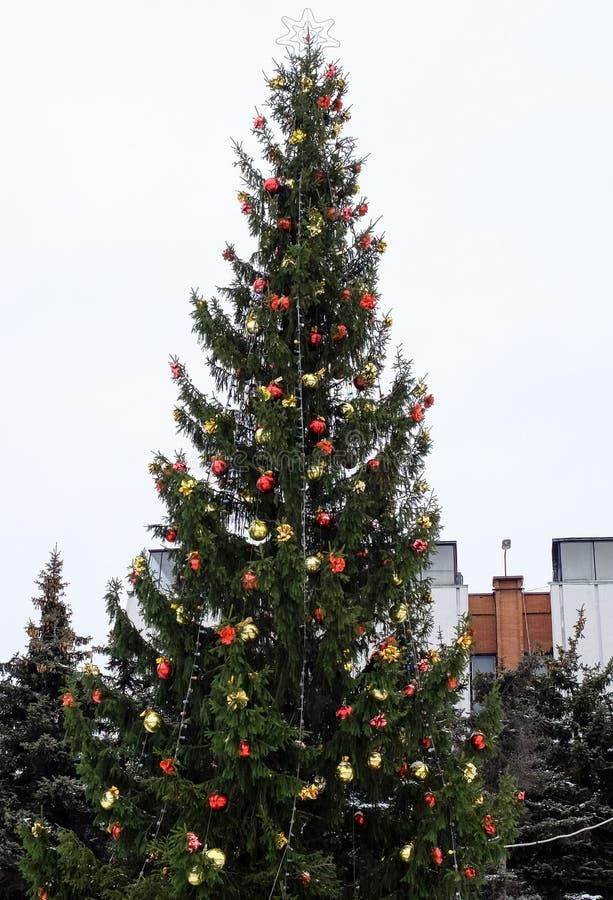 Download Рождественская елка с гирляндой и звездой Стоковое Фото - изображение насчитывающей звезда, гирлянда: 81815190