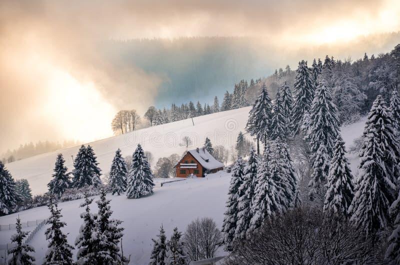 Рождество в зиме черного леса в снеге Todtnauberg стоковое изображение rf