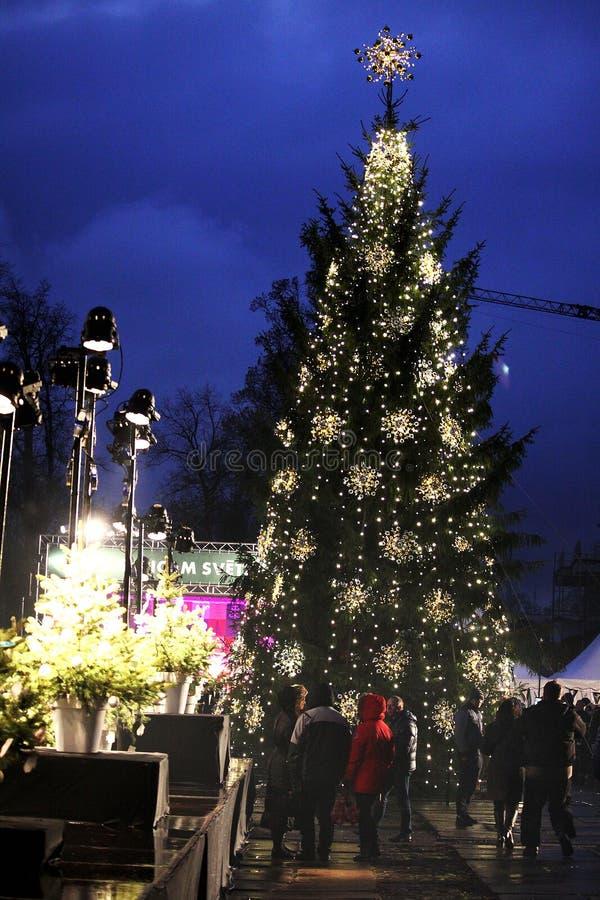 рождество красит волшебный вал радуги стоковые изображения
