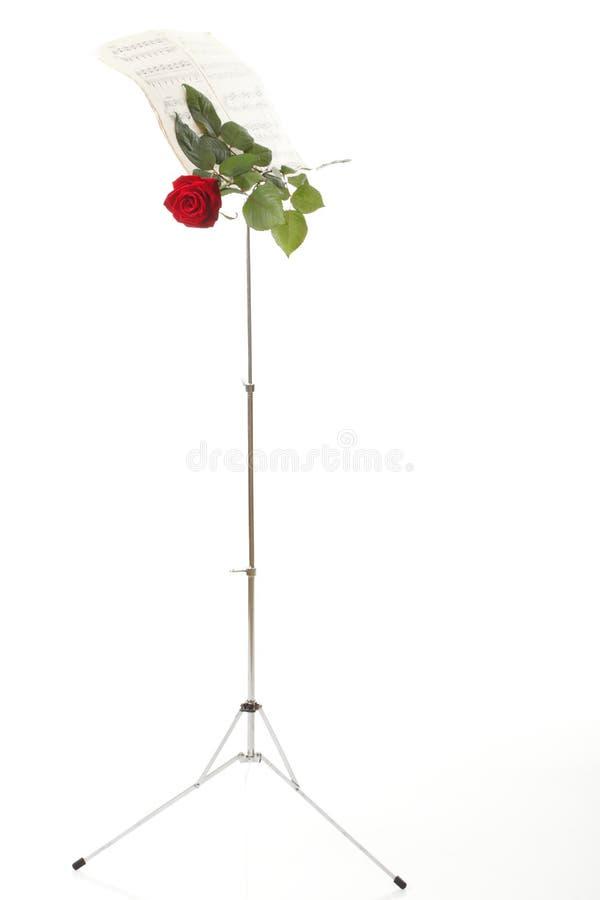 Роза красного цвета и старое нот листа примечаний стоковое фото rf