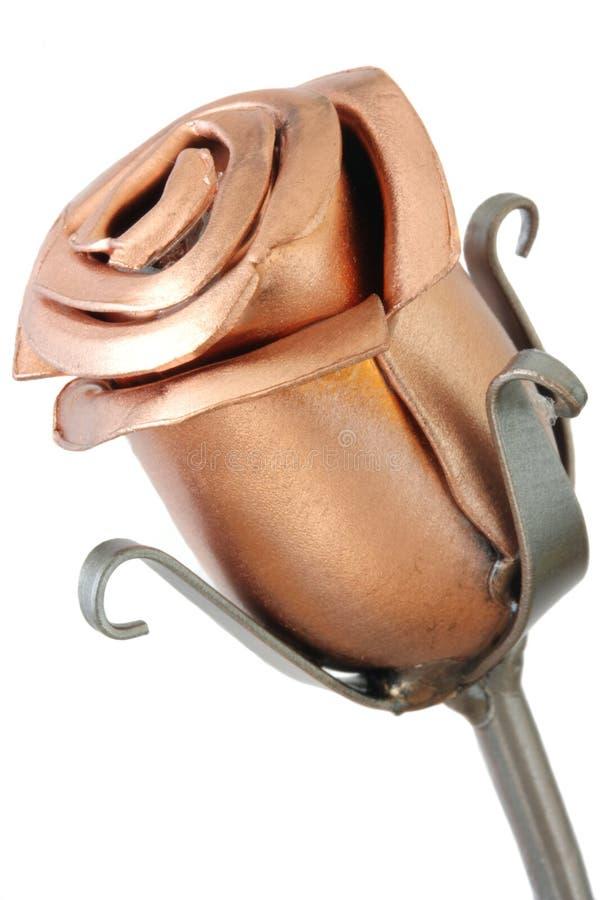 роза металла одиночная стоковое изображение