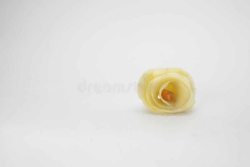 Роза сделало с отрезанными картошками в спирали стоковое изображение rf